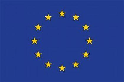 Timber Focus Leaving the EU