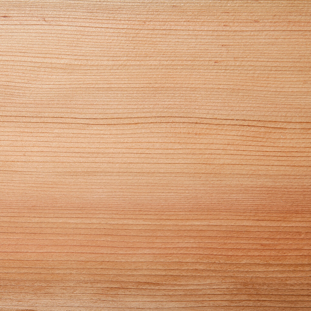 Timber Focus Canadian Western Red Cedar Close up
